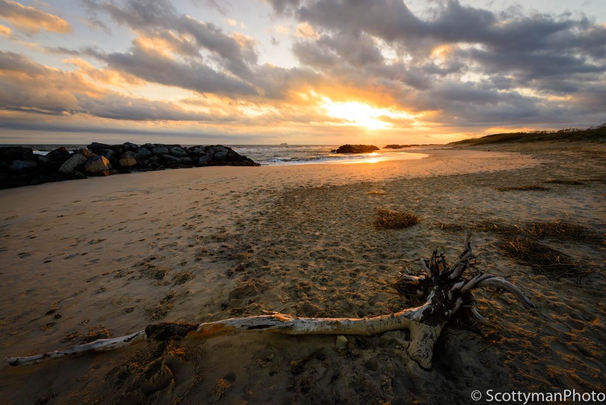 Beach Gold