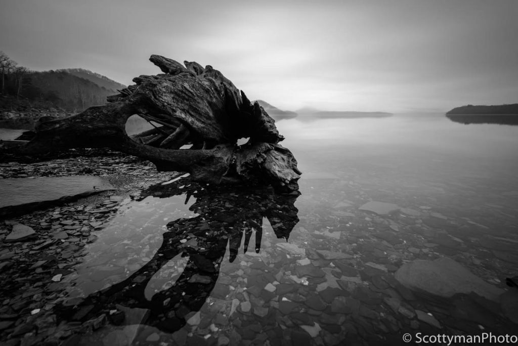 old-driftwood-sunrise-at-cave-run-lake-morehead-kentucky-1024x684.jpg
