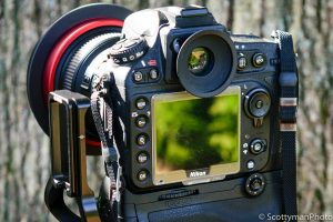 Should I Use the Camera Viewfinder or LCD | Photography Tips